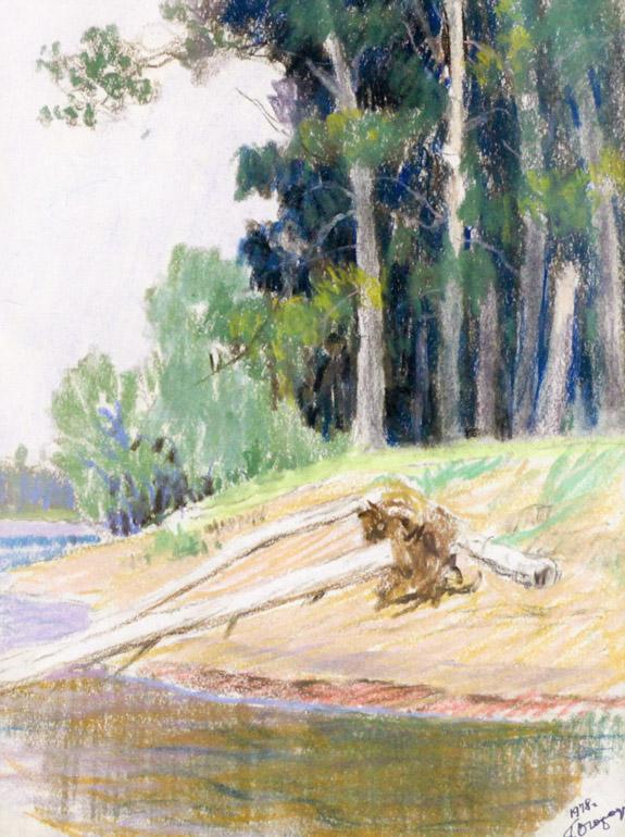 Огородов Г.В. Обрывистый берег