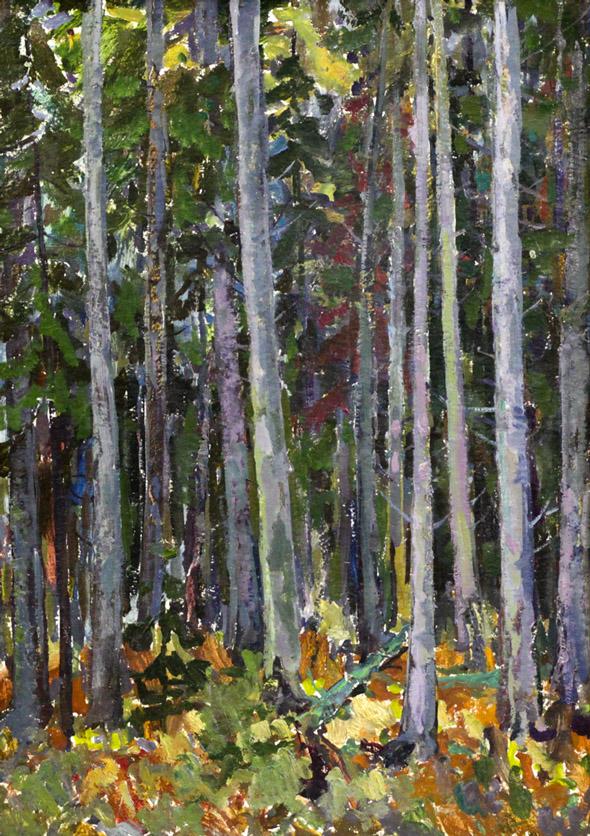 Харин Г.Е. В дремучем лесу