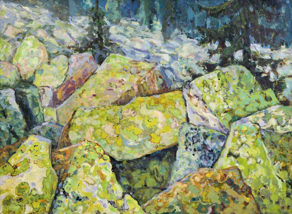 Харин Г.Е. Каменные россыпи