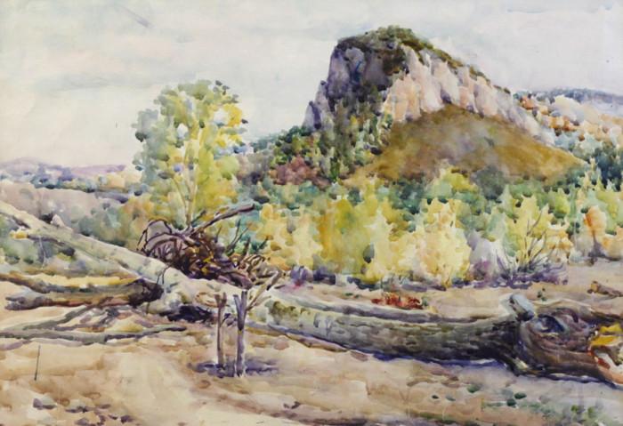 Ерёменко П.Я. Пейзаж с упавшим деревом
