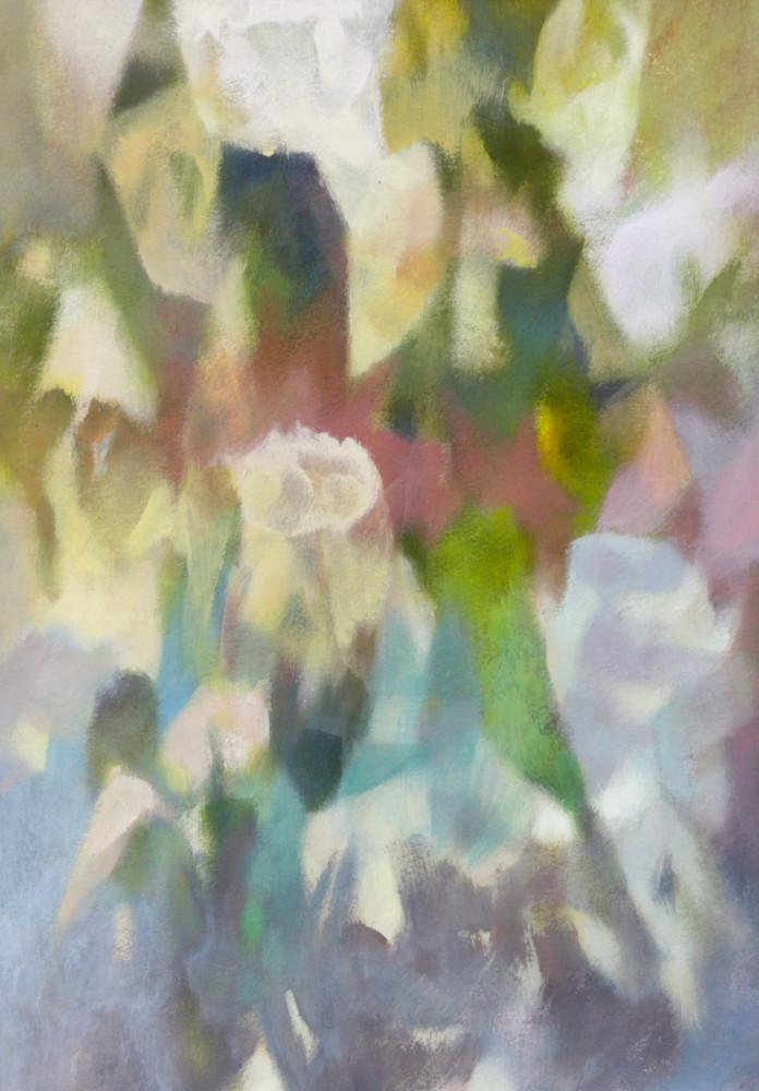 Спиридонов М. Кремовые цветы