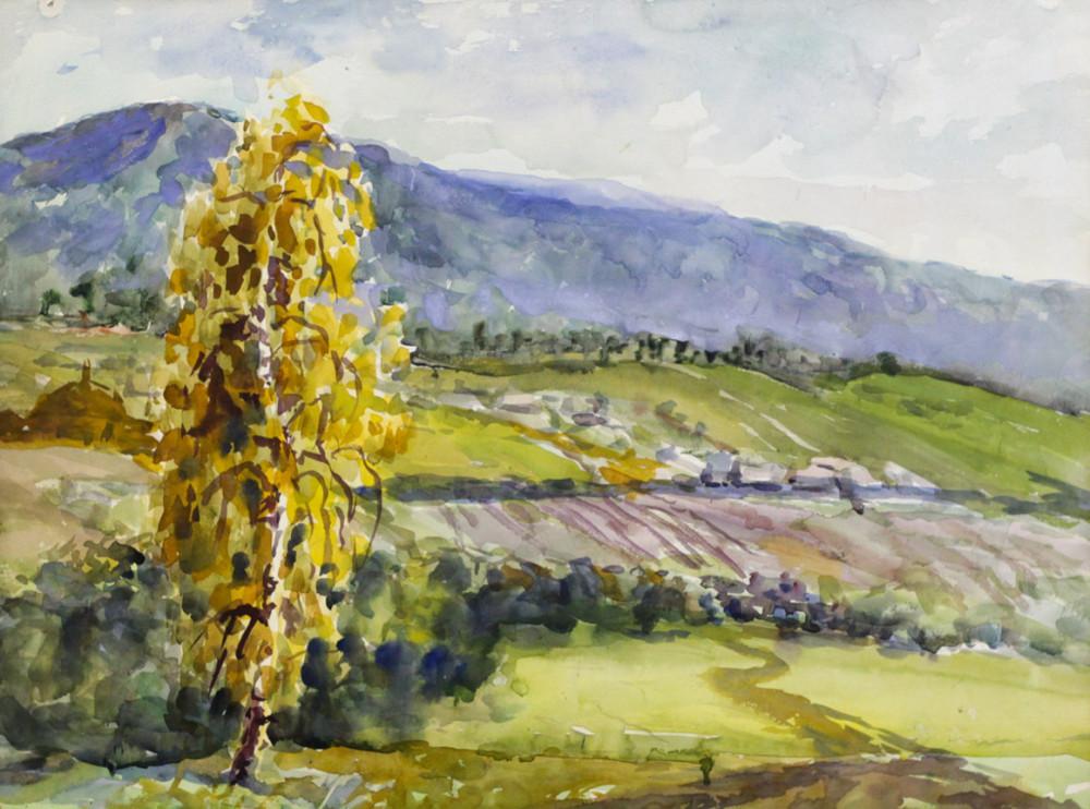 Ерёменко П.Я. Одинокое дерево