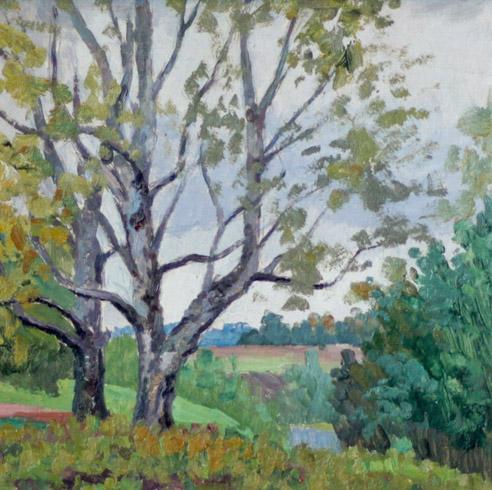 Огородов Г.В. Весенний пейзаж