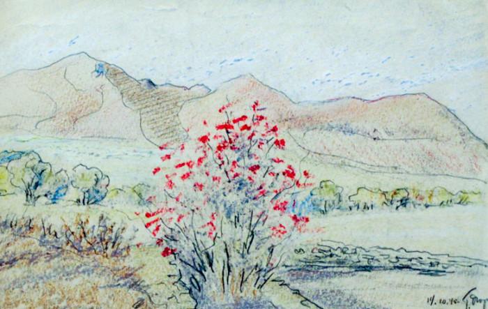 Огородов Г.В. Пейзаж с сопками