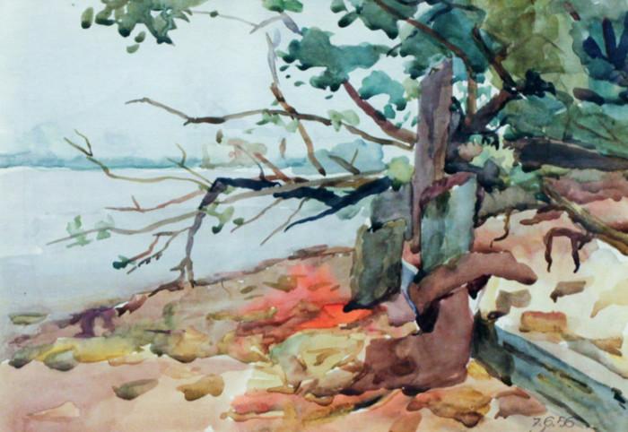 Селиков Н. На реке Белой