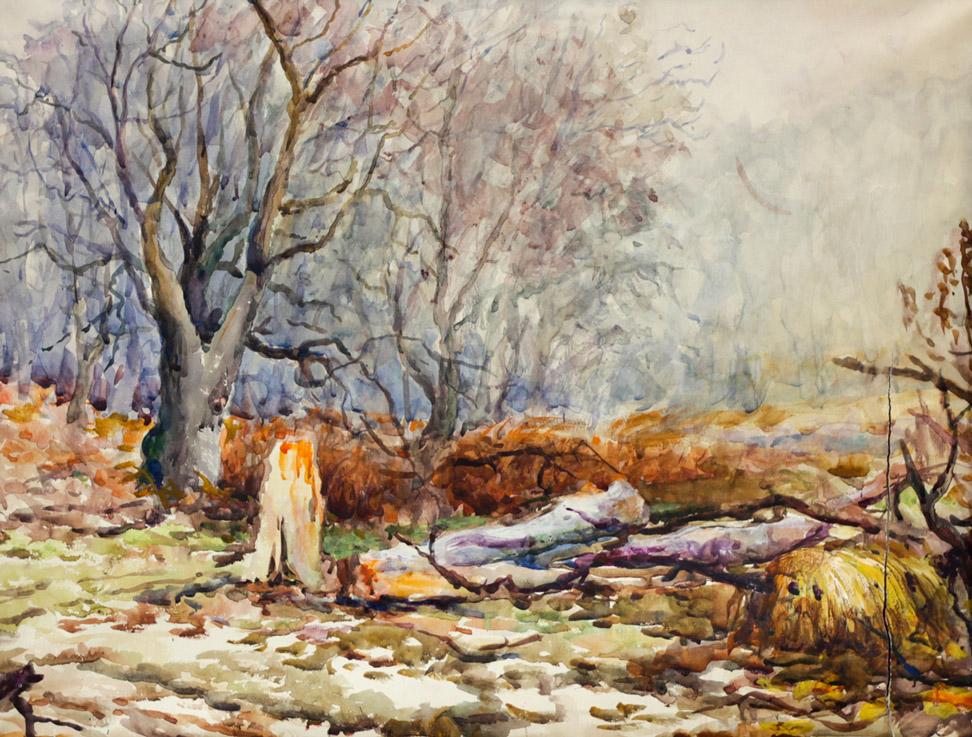 Ерёменко П.Я. В лесу