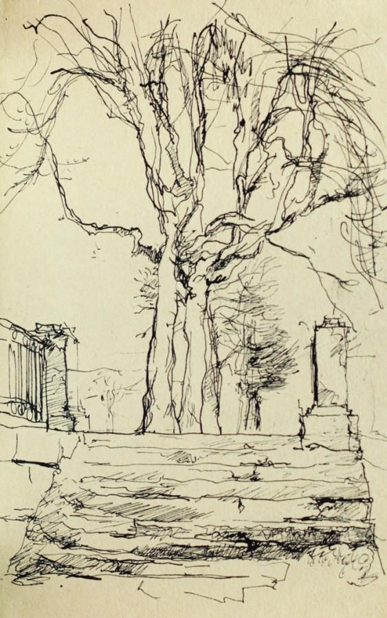 Автор Неизвестен Дерево