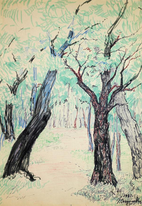 Огородов Г.В. В лесу